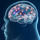 Enfermedades neurodegenerativas: Parkinson y Alzheimer
